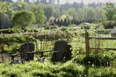 farm 089