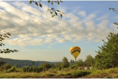 summer_balloon_farm