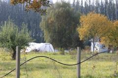 Farm fall 2013 (42)