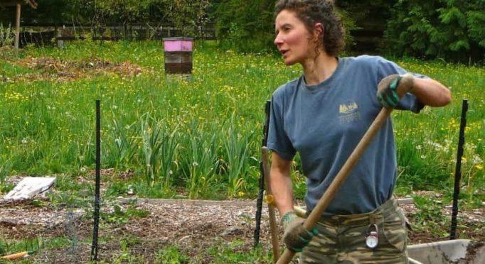 foraging, nettles