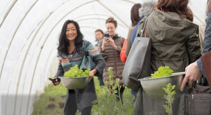 Farm to Table cooking classes