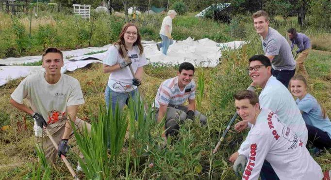 Volunteer group on the 21 Acres farm