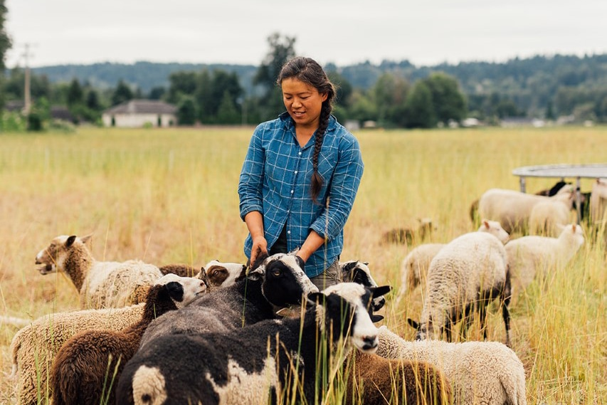 Emily Tzeng of Local Color and Fiber handles her sheep. Women farmers are essential to the local food economy.