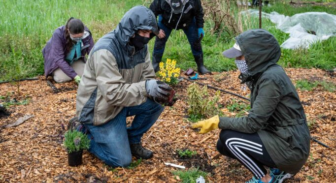 Volunteers plant out the pollinator garden at 21 Acres.