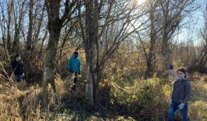 Volunteers in the 21 Acres wetlands work on cutting back weeds.